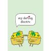 My Darling Dhokru